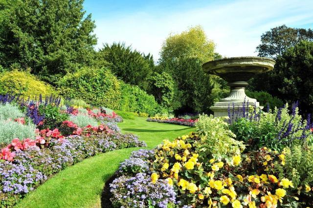aranżacje ogrodu, ogród